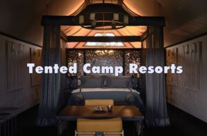 Tented-Camp-Resorts
